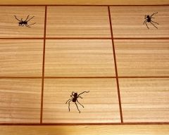 Table_Top_With_Spiders